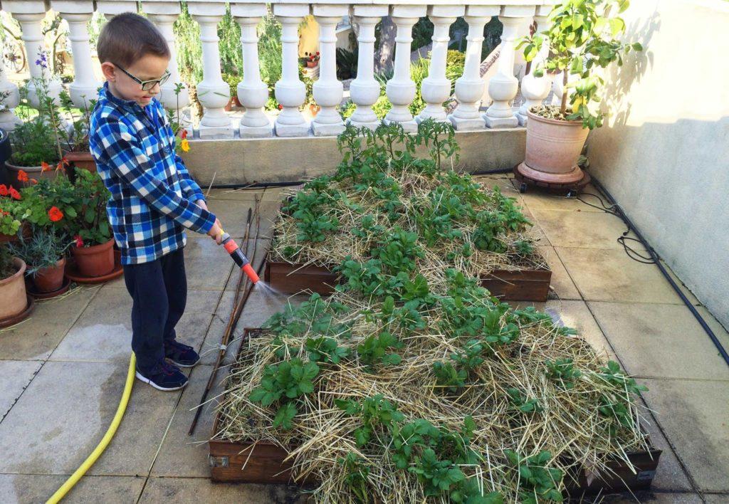 La marelle nourricière pour apprendre la permaculture en s'amusant