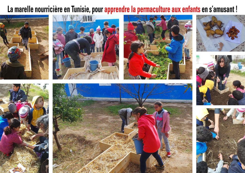 Apprentissage de l'autonomie alimentaire par la permaculture avec les enfants
