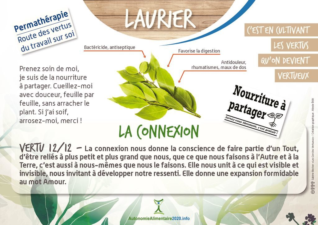 thumbnail of FicheVertu12-laurier