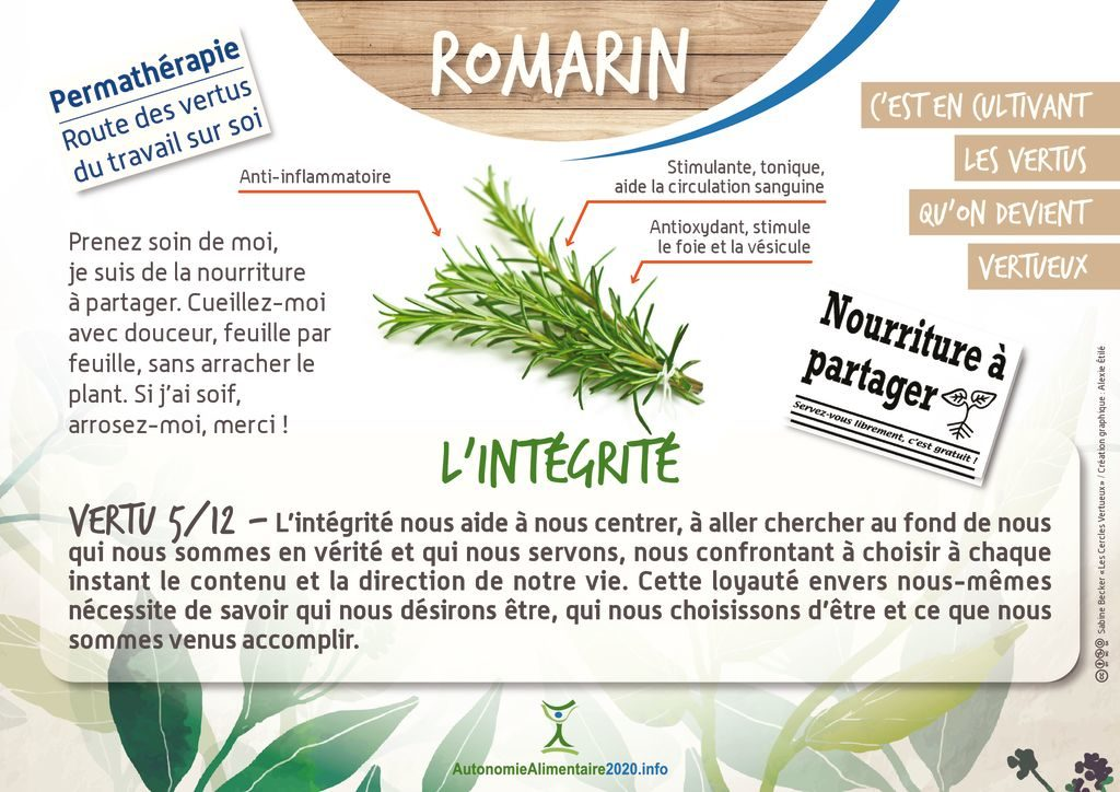 thumbnail of FicheVertu5-romarin