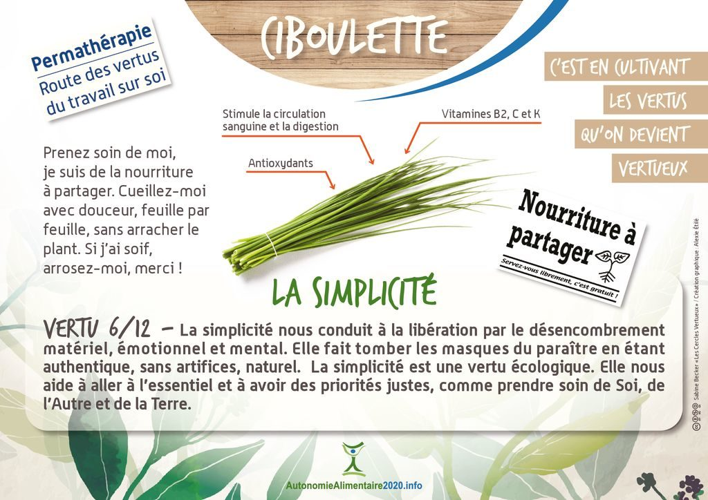 thumbnail of FicheVertu6-ciboulette