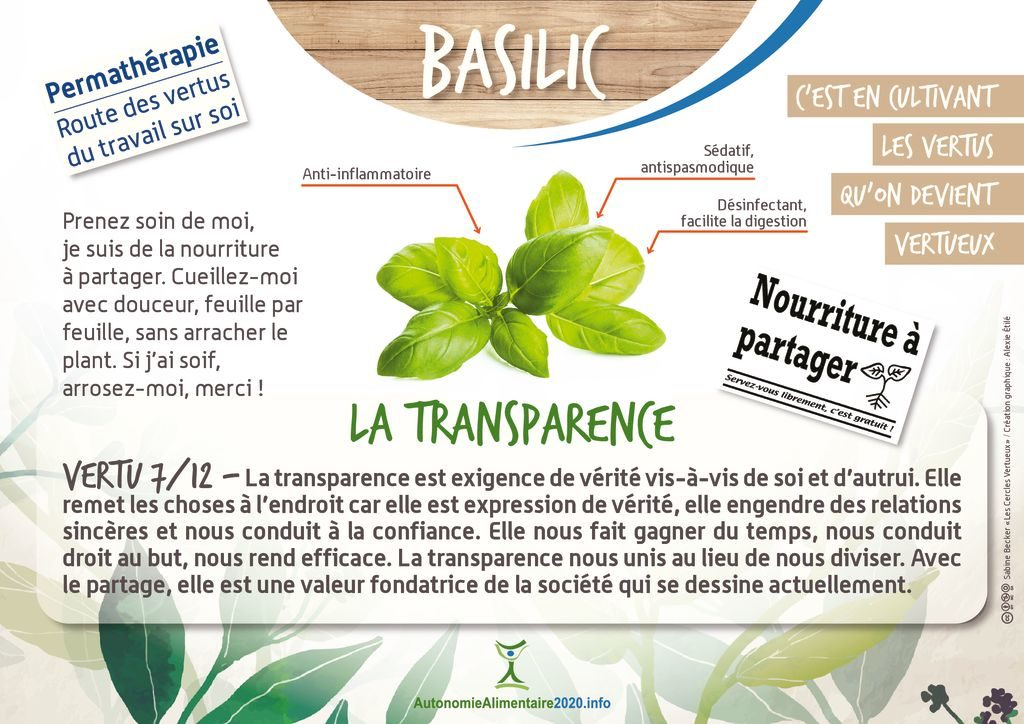 thumbnail of FicheVertu7-basilic